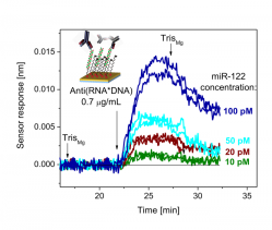 Detection of miRNA-122 (marker of liver damage) using an SPR biosensor and sandwich assay.